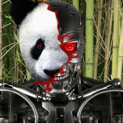 google panda update